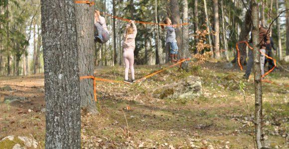 Hinderbana i skogen